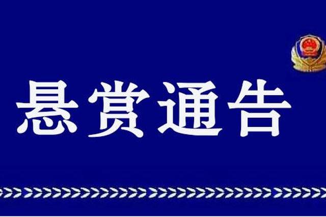 重庆警方发布悬赏通告 见到这11个人请立刻报警