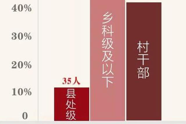 重庆2月查处扶贫领域腐败和作风问题235件320人