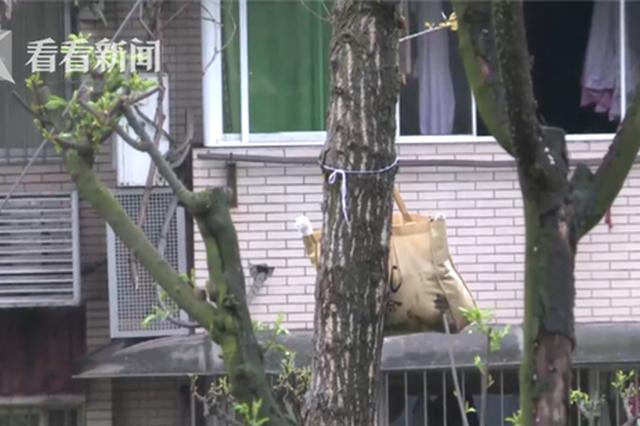 阵阵恶臭!重庆一公园树上有个袋子 打开一看吓惨了