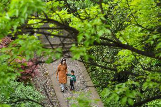 重庆山城步道绿意浓 成为一道独特风景