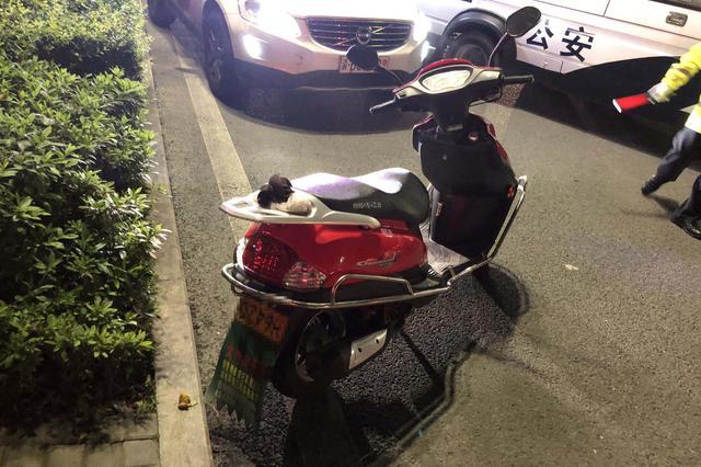 """男子无证驾驶摩托车""""二进宫"""" 被罚5500元刑拘5天"""