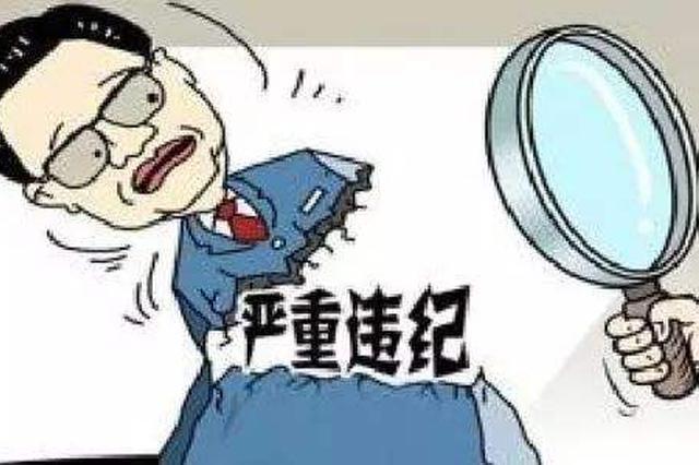 重庆渝海控股原党委委员、副总经理李永接受审查调查