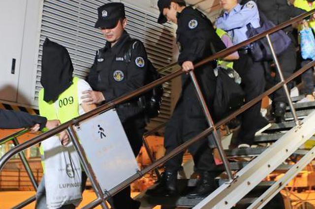 中柬执法合作成功抓获223名电信诈骗团伙成员