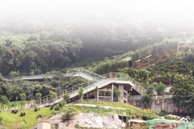 重庆首条电动扶梯崖壁步道试运行 串连多个知名景点