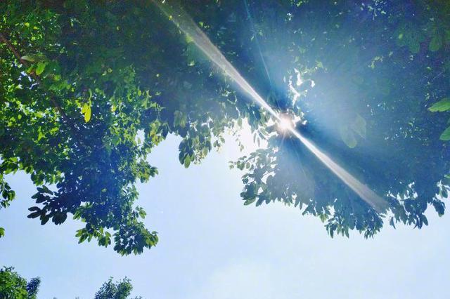 今天高温持续 明日各地降雨降温