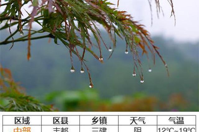 今天大部阴天 重庆主城最高气温19℃