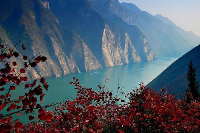 99对红叶恋人将在巫山举行集体婚礼 共赏巫峡美景