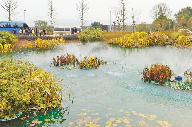 重庆海绵城市建设全面提速 管控指标全部落实到地块