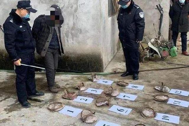 数罪并罚!重庆一男子非法持枪猎杀野生动物获刑四年