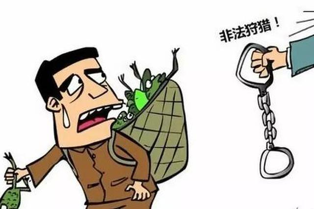 重庆警方侦破一起非法运输售卖珍贵濒危野生动物案