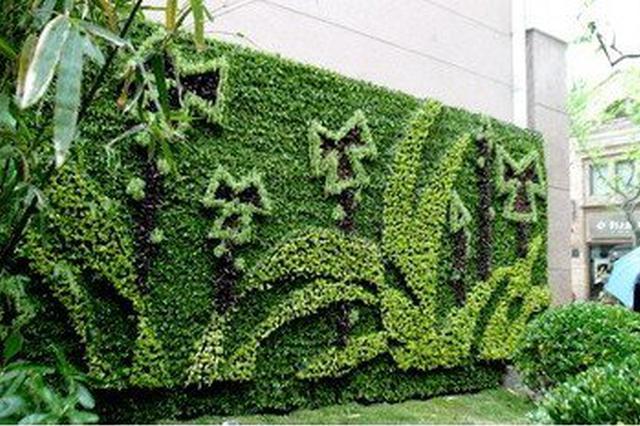 城市立体绿化怎么建?重庆最新条例正式实施