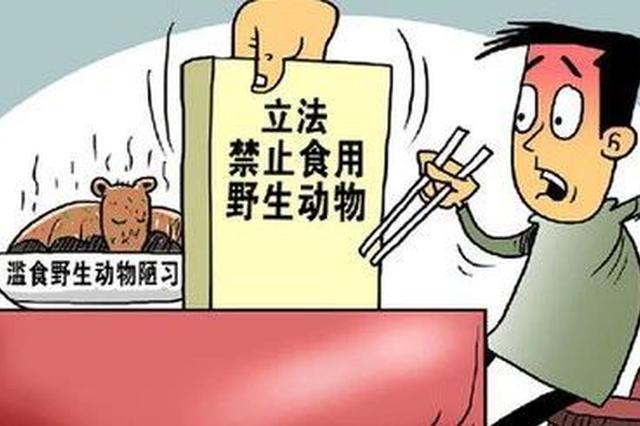 动真格了!重庆全面禁止非法交易、食用野生动物