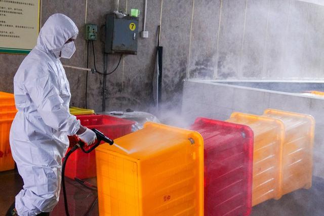 重庆疫情相关医疗废物收集处置率达100%