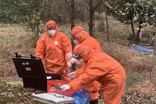 重庆:疫情医疗废物和废水收集处置率达100%