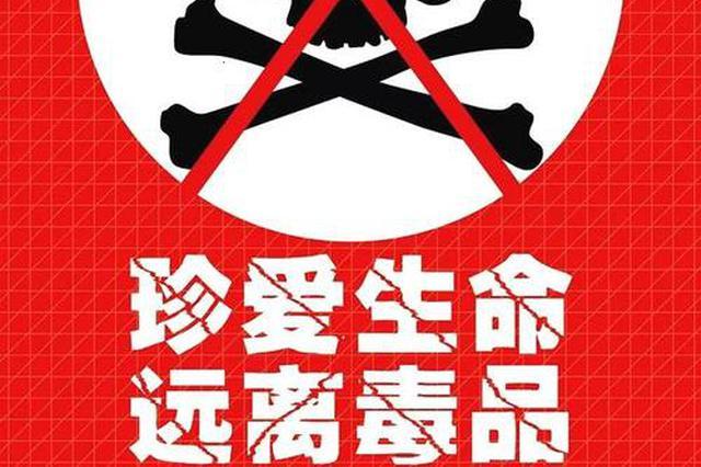 重庆海关上半年缴获各类走私毒品28.8千克