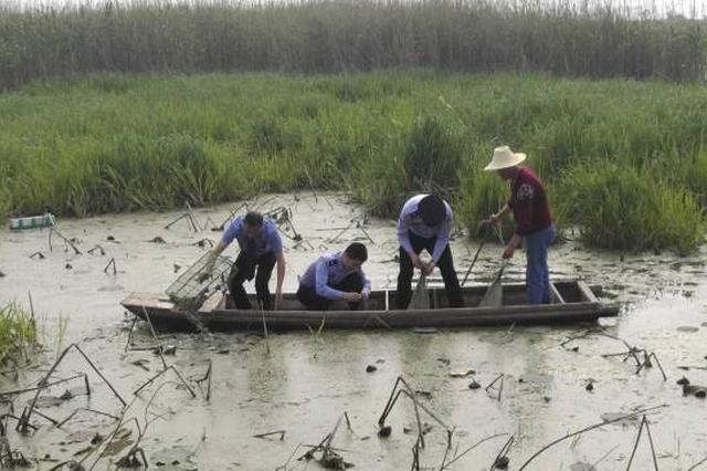 保护珍稀特有鱼类 10万尾圆口铜鱼放流长江