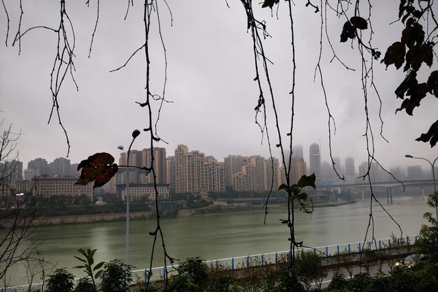 该穿秋裤了!重庆未来三天阴雨持续 气温低至11℃