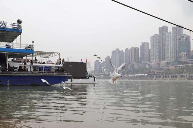 好安逸!重庆未来三天继续晴暖模式 最高气温25℃