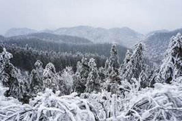 重庆冬季多雾多雨还有雪 这份安全驾驶手册请收藏好