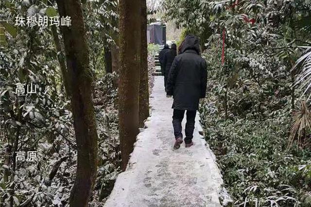 """重庆中心城区陆续传""""雪讯""""!南山玉峰山都飘雪了"""