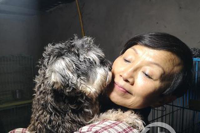 卖房收养上千只流浪猫狗的奶奶欠薪半年 狗狗的粮食快见底了