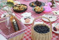 摘蓝莓 吃网红野餐