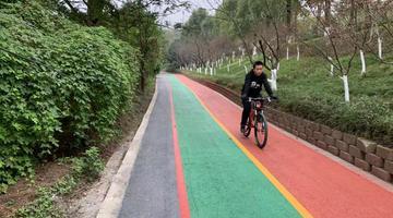 独家:打望重庆首条临江自行车道
