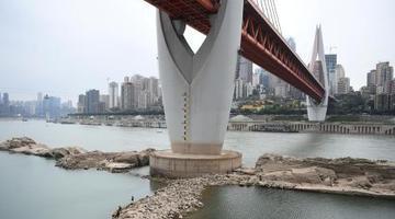 长江重庆段枯水期 大桥桥墩已见底