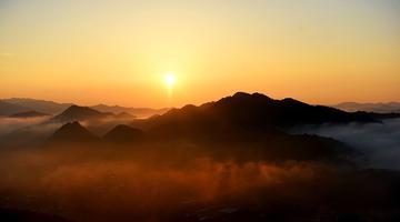 大美视角!重庆一森林公园晨雾之光