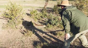 重庆奇人星巴在肯尼亚野外与岩蟒比力气