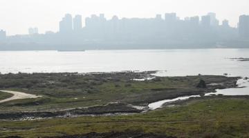 长江重庆段大面积河滩裸露在外