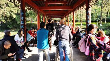 彩云湖公园人气爆棚 市民捞鱼拍照忙