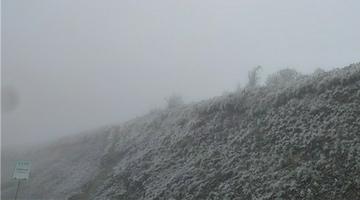 下雪啦!重庆深秋的第一场雪落在了城口