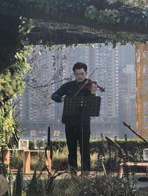 重庆举办花博会 市民趁暖阳花漾游园