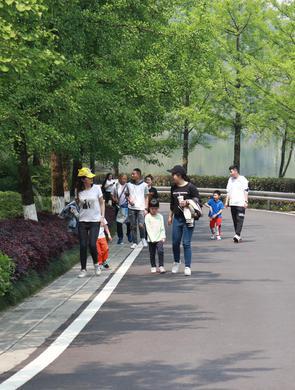 园博园风光旖旎绿意盎然 市民赏花游园