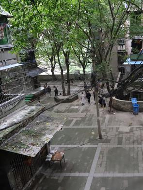 《风犬》热播 重庆取景地成网红打卡点