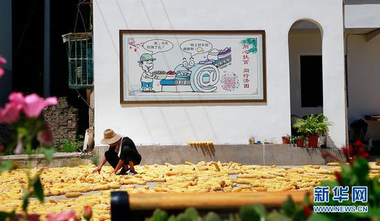 """重庆万州:昔日""""空壳村""""变示范村[组图]"""