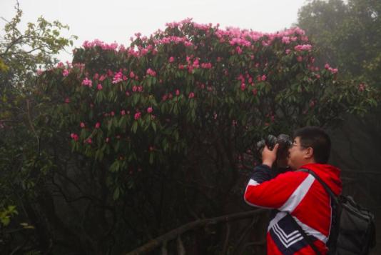 摄影:吕游