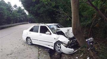 重庆女司机边开车边网购秒杀 车毁人伤
