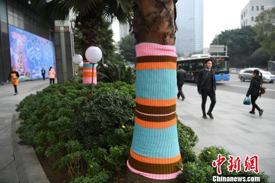 """重庆街头""""大树""""穿彩色毛衣盛装御寒"""