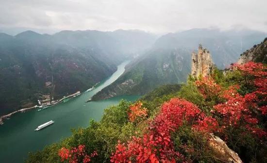 全国人民都想来重庆旅游 但最想吃的美食不是火锅