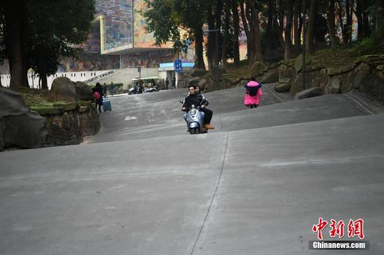 """重庆一高校现""""波浪路""""成校园网红"""