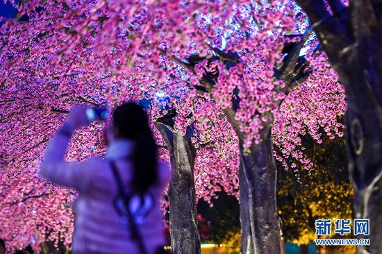 """年味儿渐浓!重庆三峡广场搭""""十里桃花""""灯饰"""