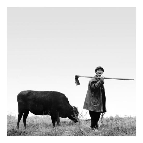 吴超老师作品——《立春》  摄于石垭镇