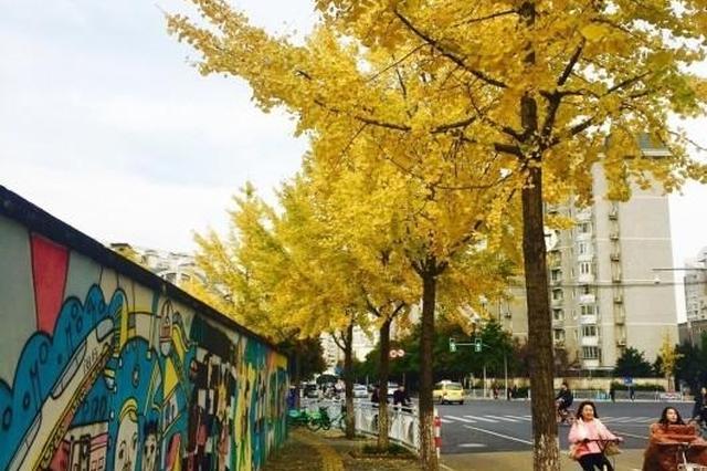 明年3月起 65岁老人乘公交轨道逛公园游景区免费