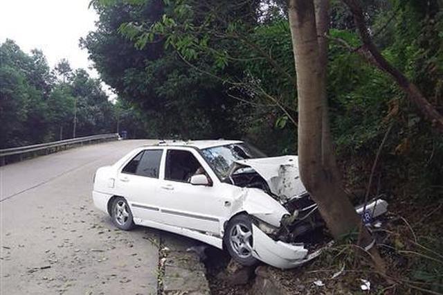重庆女司机边开车边网购秒杀 迎头撞大树车毁人伤