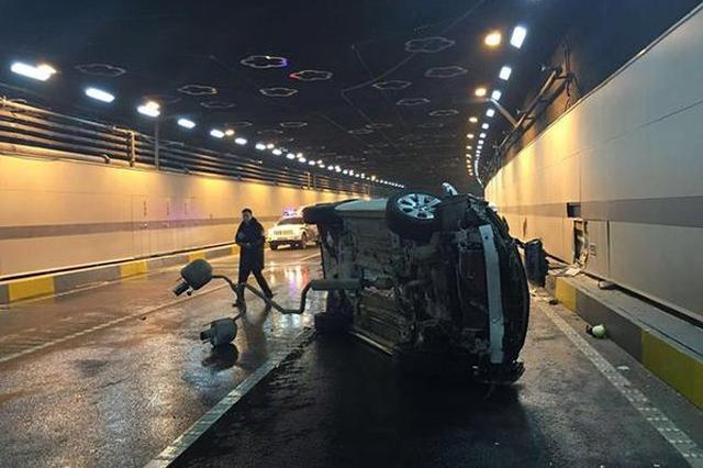 重庆:高速隧道内肥猪乱窜 引两起事故