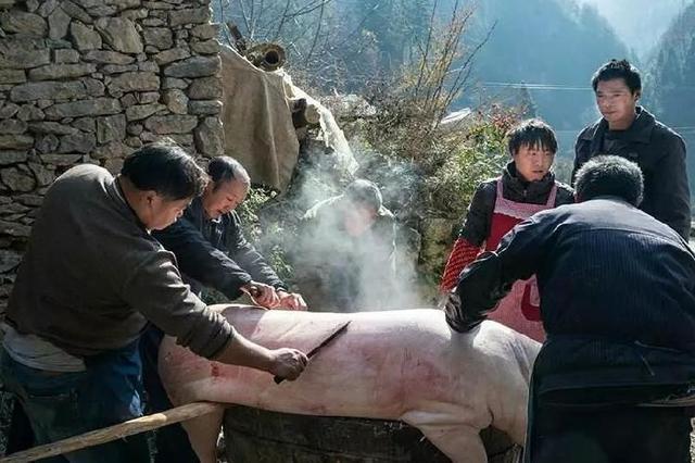 年味老重庆 荣昌刨猪汤 有历史的味道