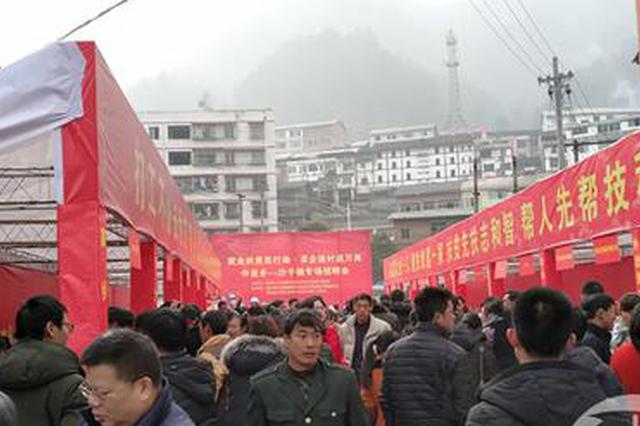 春节前后重庆有18场就业扶贫招聘活动