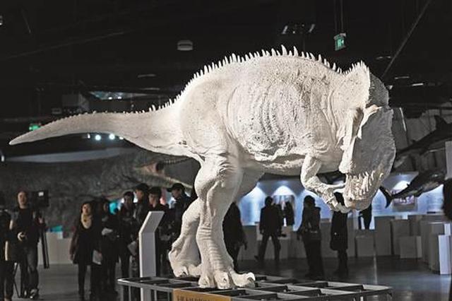 雪山之巅迎击风雪 重庆自然博物馆首次举办VR科普展